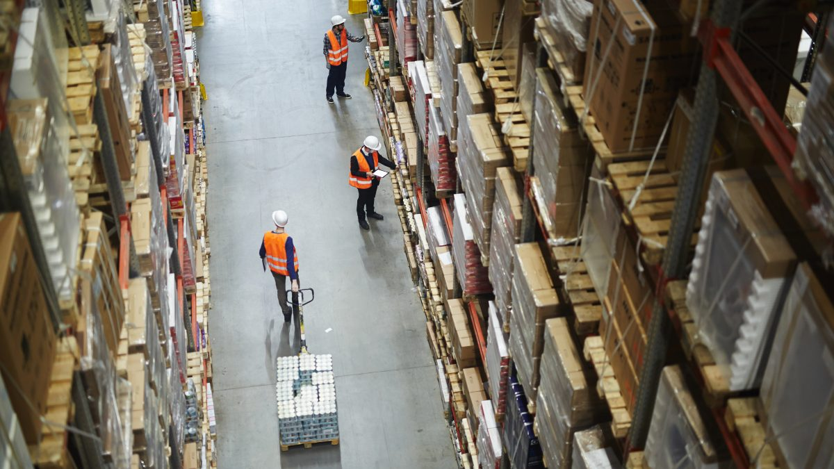 workers in a warehouse supply chain