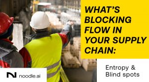 What's Blocking Flow in Your Supply Chain: Entropy and Blind Spots